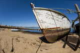 Abandoned Wood Boat on Cape Cod