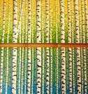 Birch Tree Series